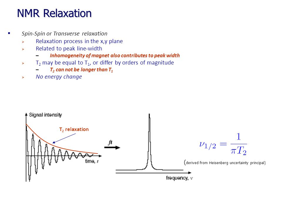 NMR Relaxation Spin-Spin or Transverse relaxation