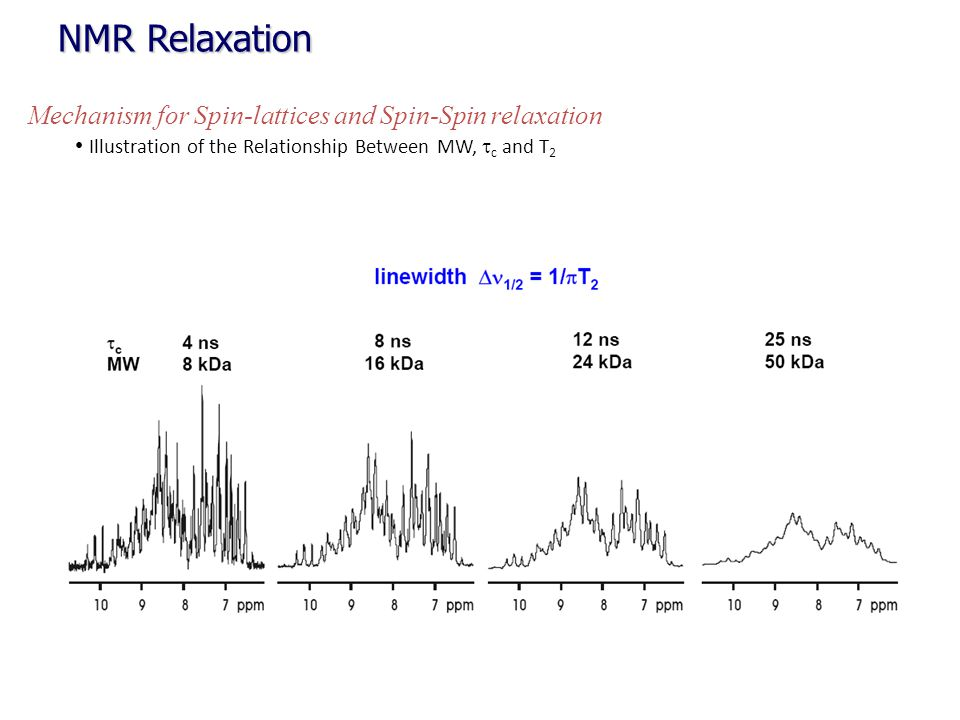 NMR Relaxation Mechanism for Spin-lattices and Spin-Spin relaxation