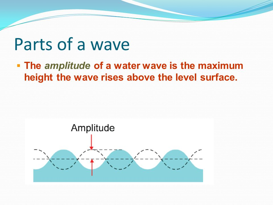 Parts of a wave The amplitude of a water wave is the maximum height the wave rises above the level surface.