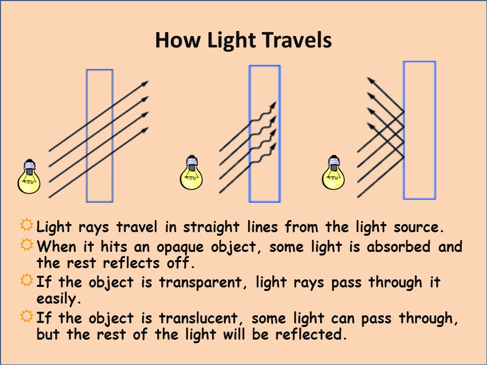 How Light Travels Light rays travel in straight lines from the light source.