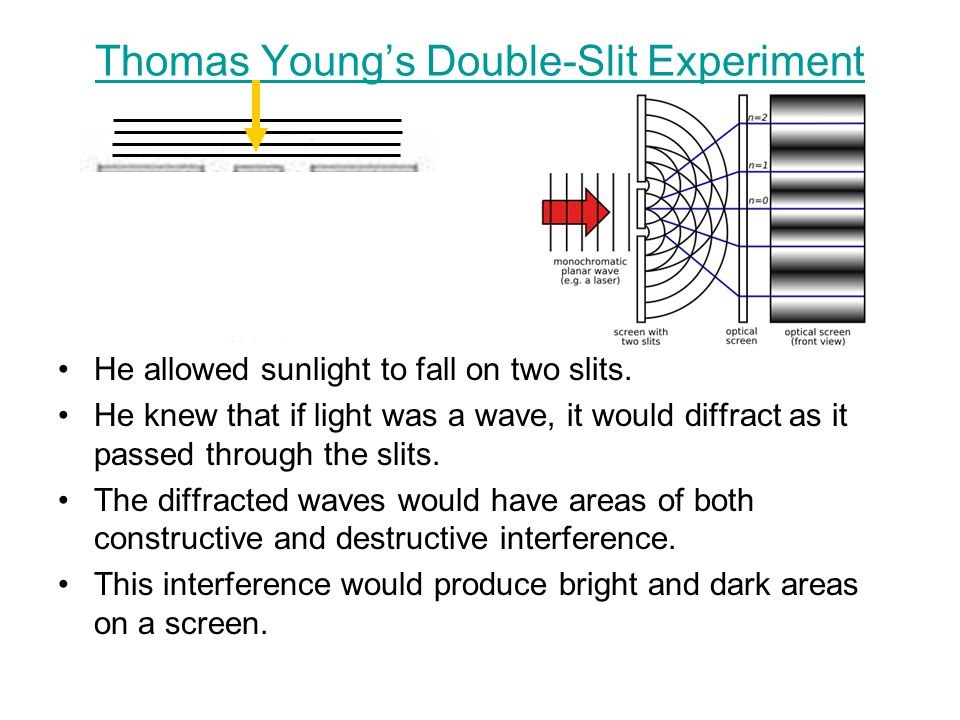 Thomas Young's Double-Slit Experiment