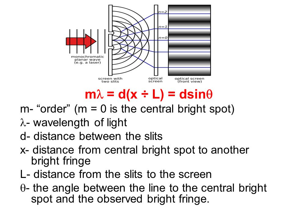 ml = d(x ÷ L) = dsinq m- order (m = 0 is the central bright spot)