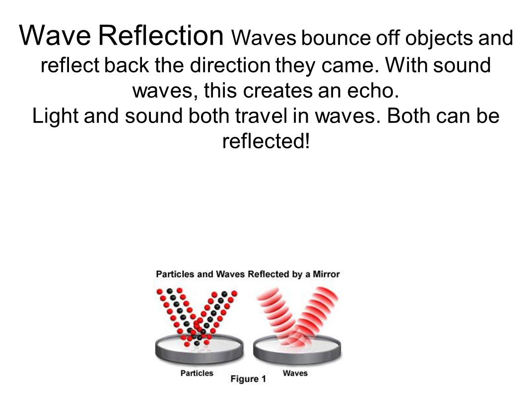 Light and sound both travel in waves. Both can be reflected!