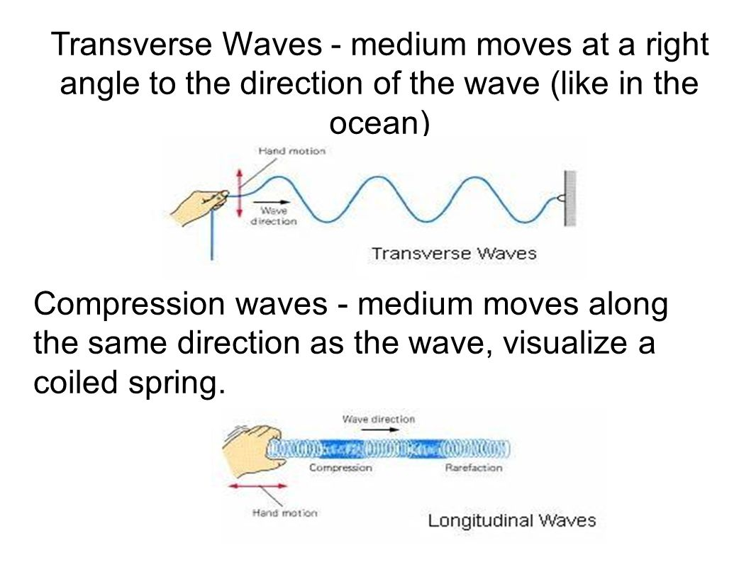 Transverse Waves - medium moves at a right angle to the direction of the wave (like in the ocean)