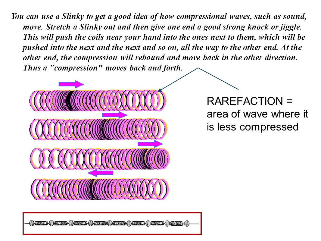 RAREFACTION = area of wave where it is less compressed