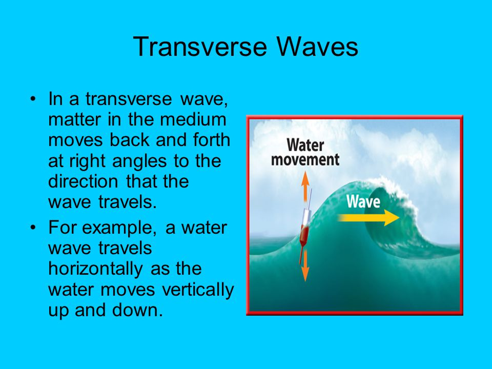 Transverse Waves In a transverse wave, matter in the medium moves back and forth at right angles to the direction that the wave travels.