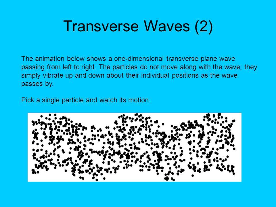 Transverse Waves (2)