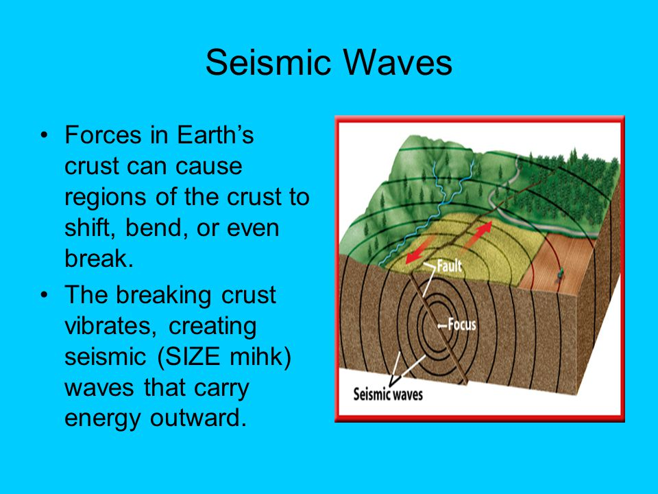 Seismic Waves Forces in Earth's crust can cause regions of the crust to shift, bend, or even break.