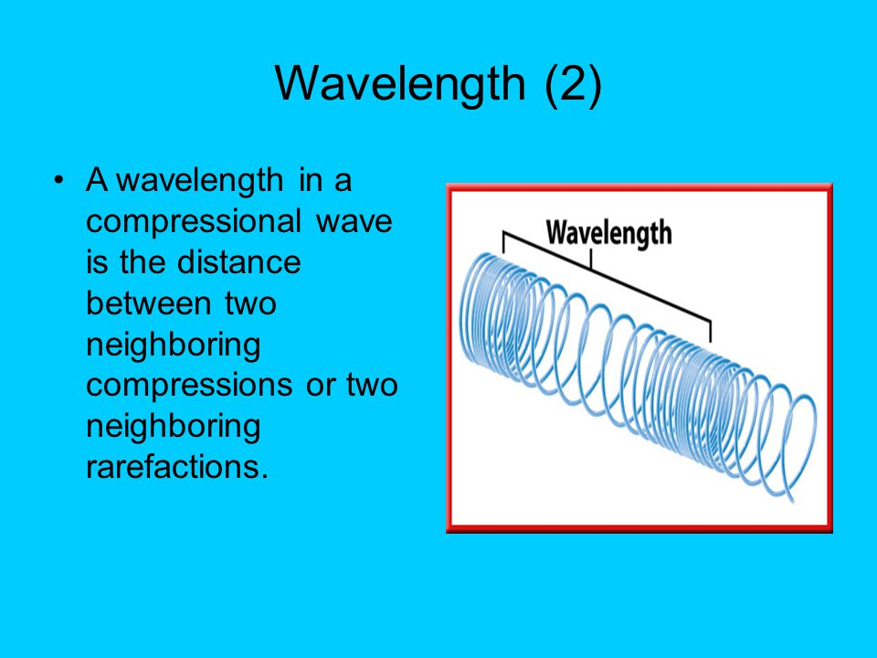 Wavelength (2) A wavelength in a compressional wave is the distance between two neighboring compressions or two neighboring rarefactions.