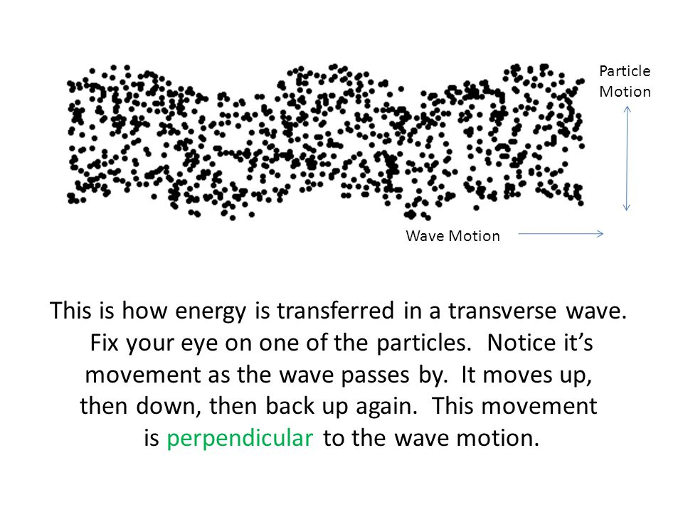 This is how energy is transferred in a transverse wave.