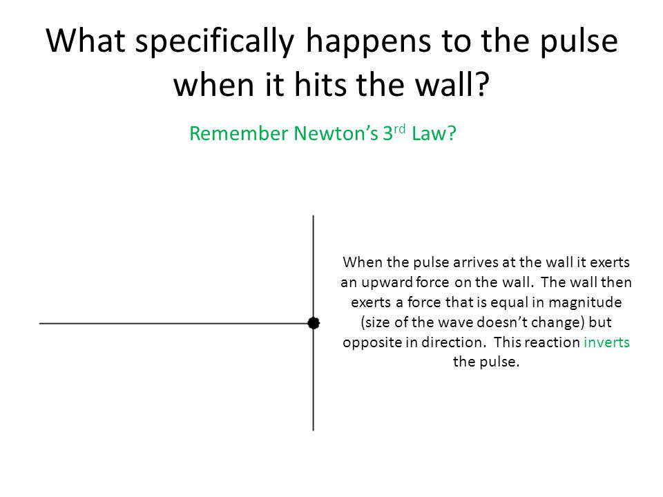 What specifically happens to the pulse when it hits the wall