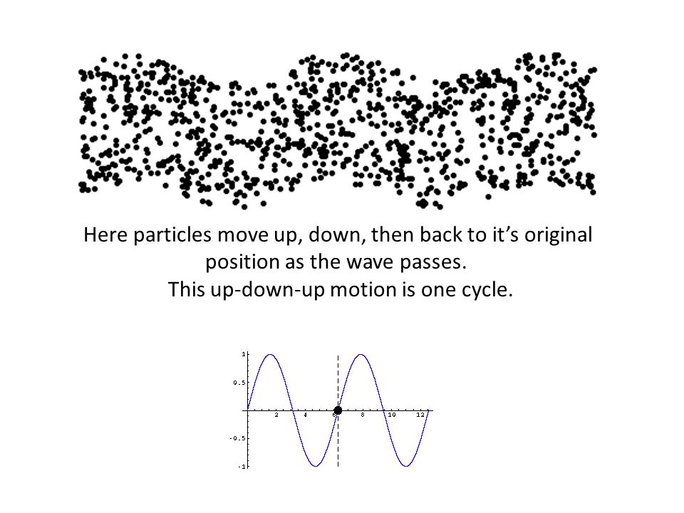Here particles move up, down, then back to it's original