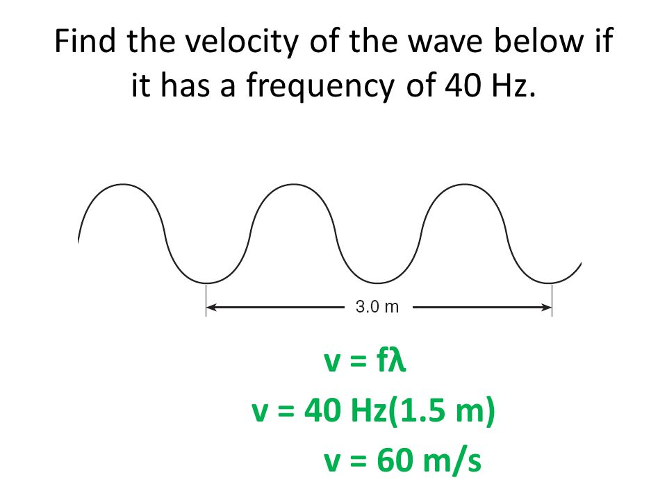Find the velocity of the wave below if it has a frequency of 40 Hz.