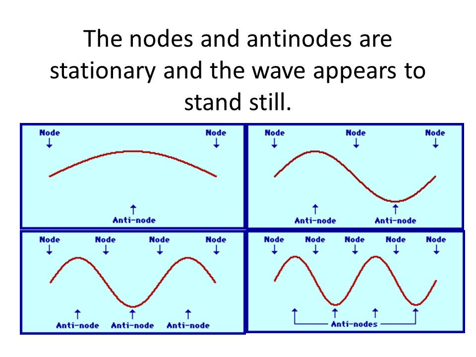 The nodes and antinodes are stationary and the wave appears to stand still.