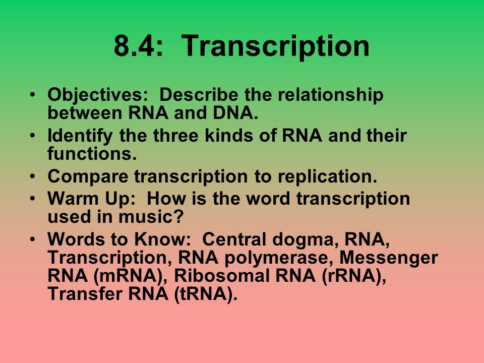 8.4: Transcription Objectives: Describe the relationship between RNA and DNA. Identify the three kinds of RNA and their functions.