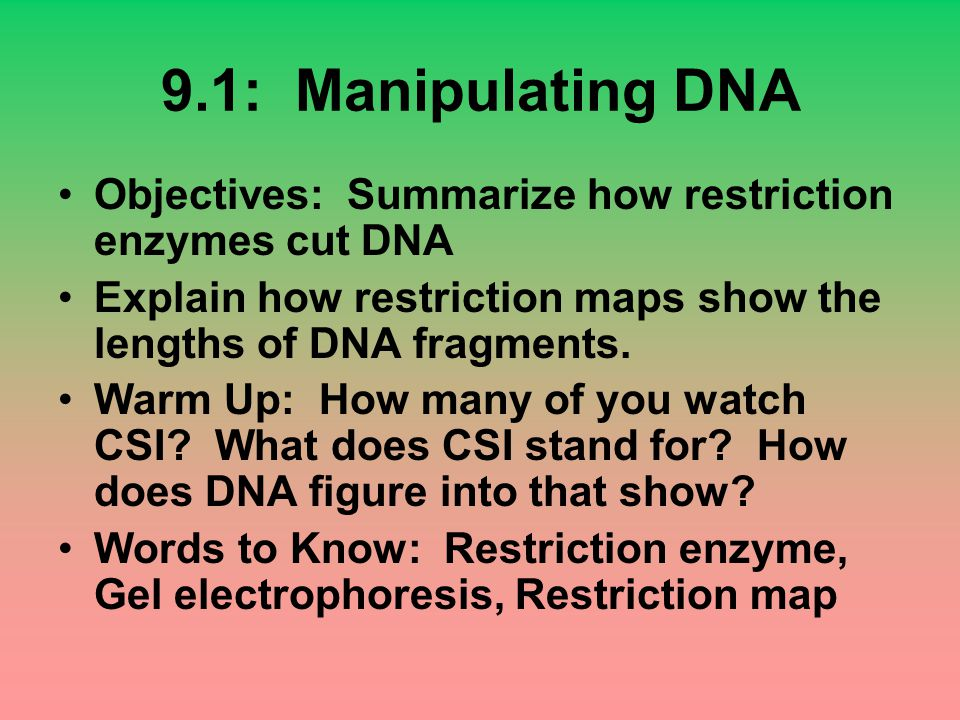 9.1: Manipulating DNA Objectives: Summarize how restriction enzymes cut DNA. Explain how restriction maps show the lengths of DNA fragments.