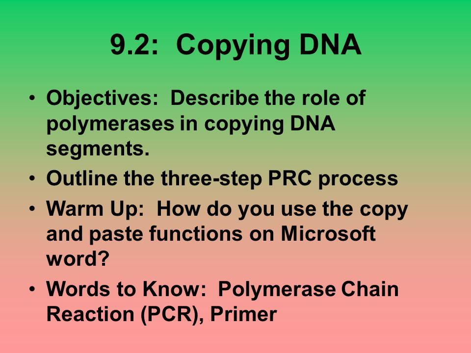 9.2: Copying DNA Objectives: Describe the role of polymerases in copying DNA segments. Outline the three-step PRC process.