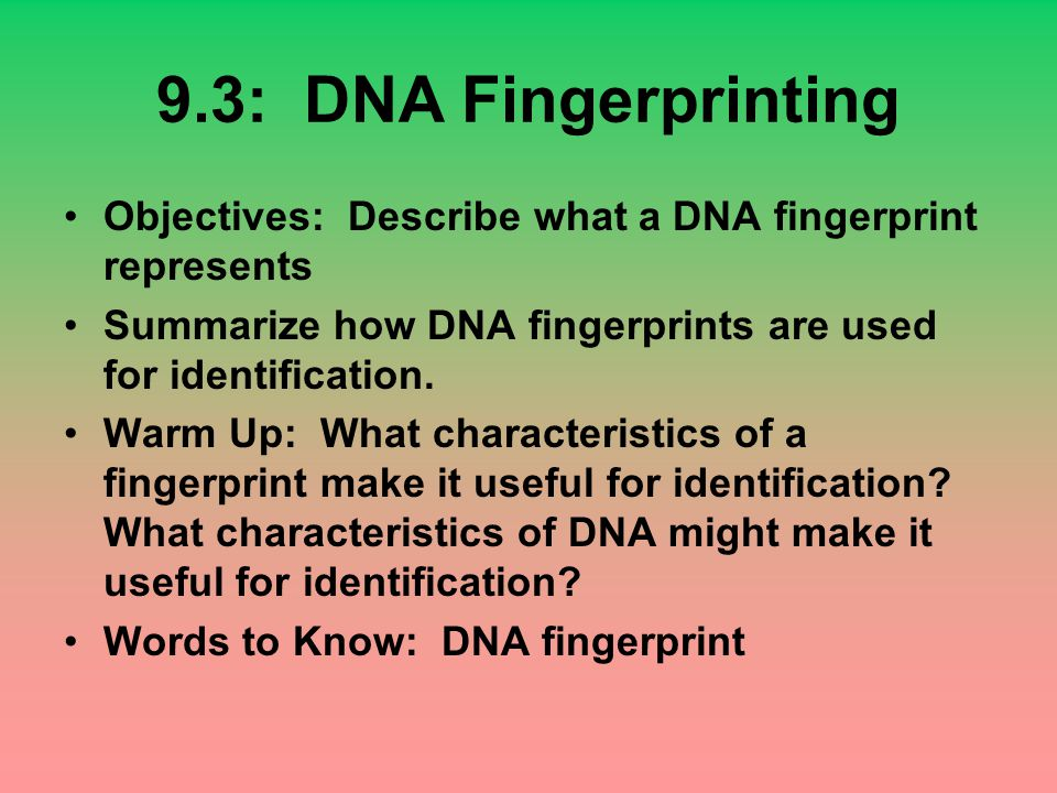 9.3: DNA Fingerprinting Objectives: Describe what a DNA fingerprint represents. Summarize how DNA fingerprints are used for identification.