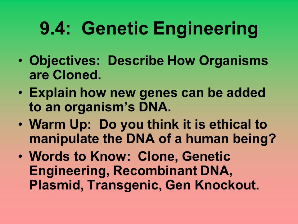 9.4: Genetic Engineering Objectives: Describe How Organisms are Cloned. Explain how new genes can be added to an organism's DNA.