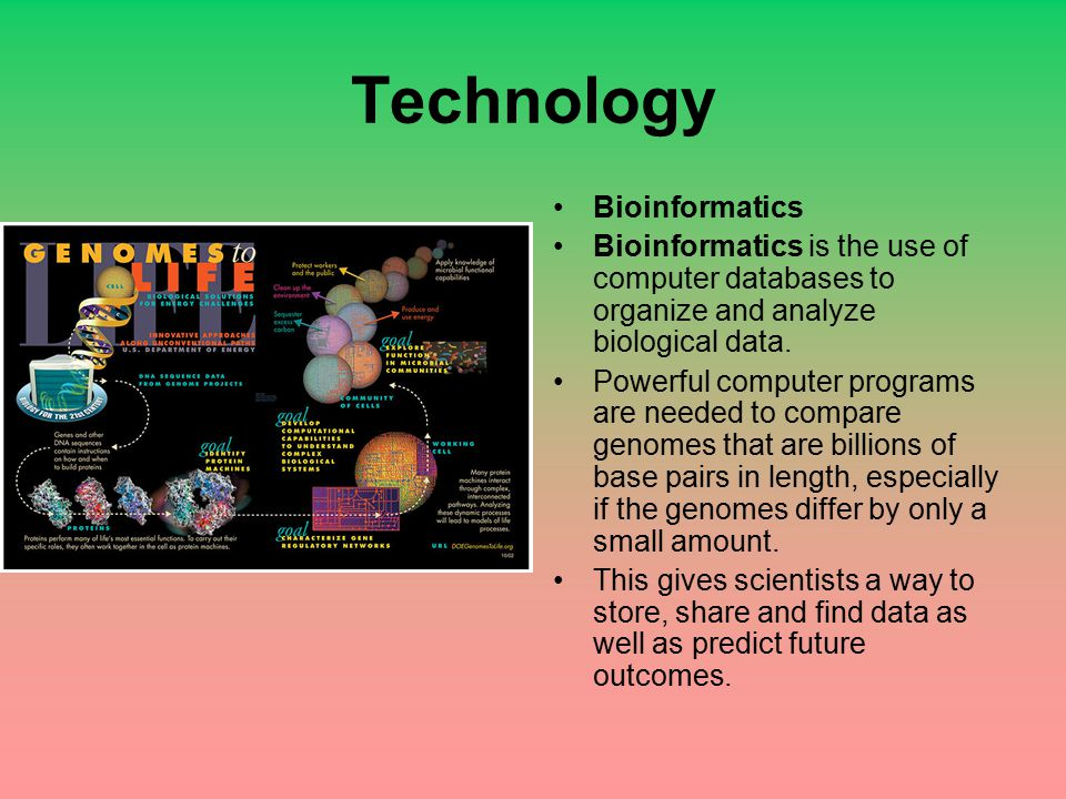 Technology Bioinformatics