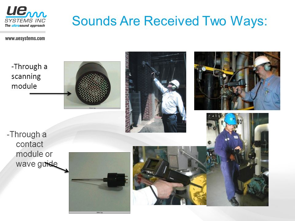 Sounds Are Received Two Ways: