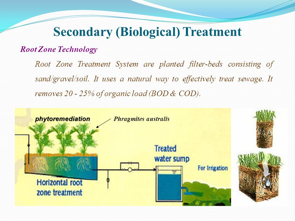 Secondary (Biological) Treatment