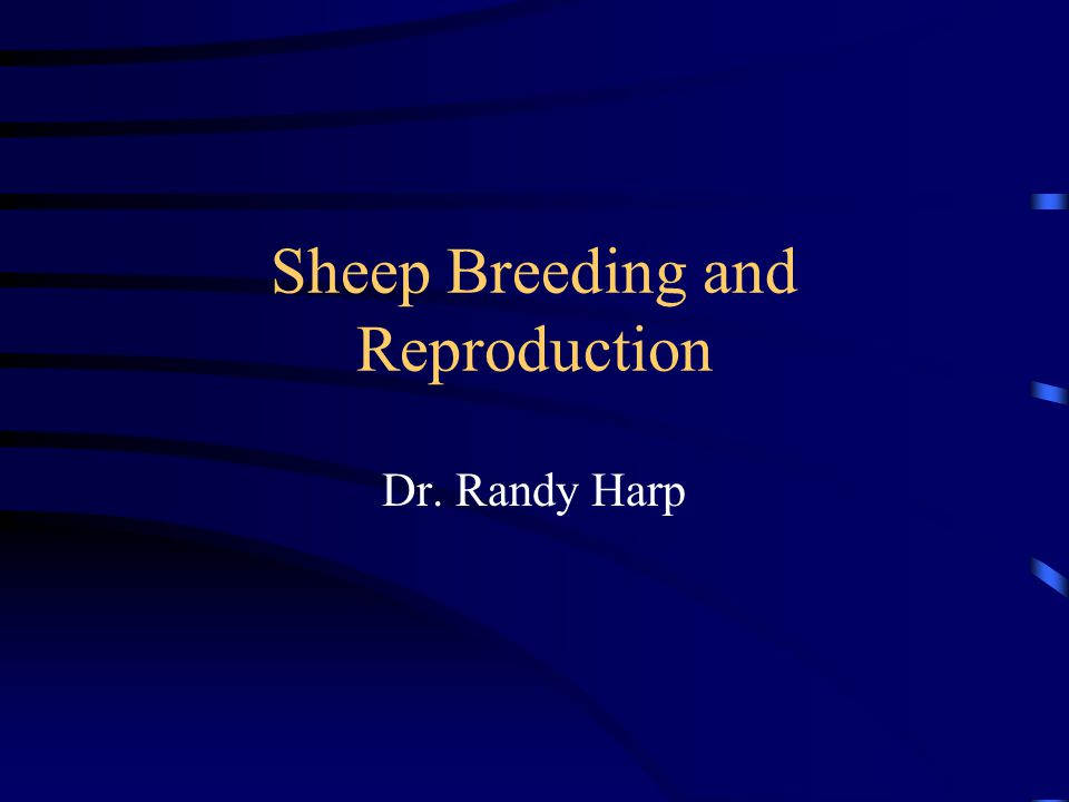 Sheep Breeding and Reproduction