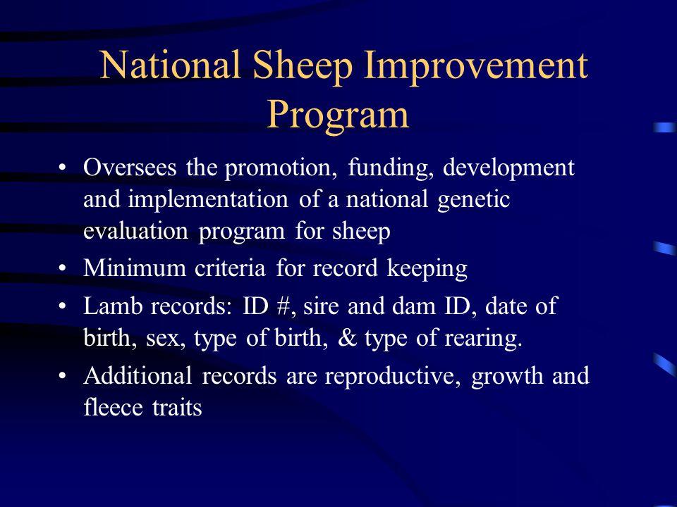 National Sheep Improvement Program