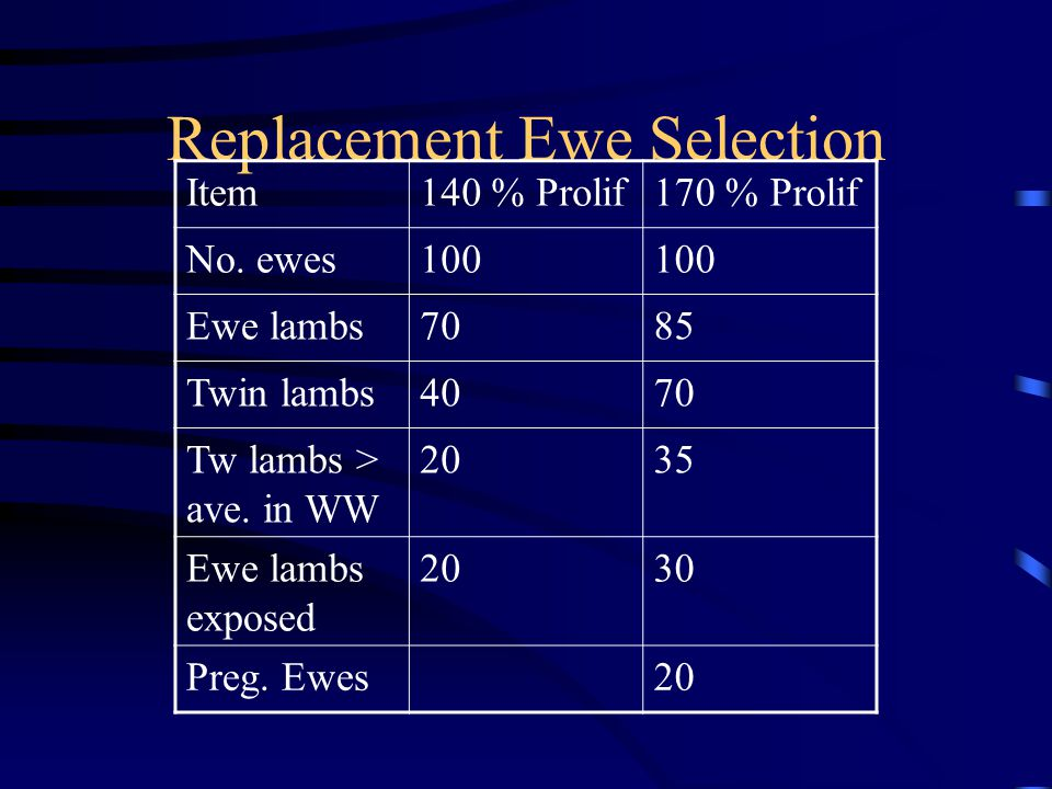 Replacement Ewe Selection