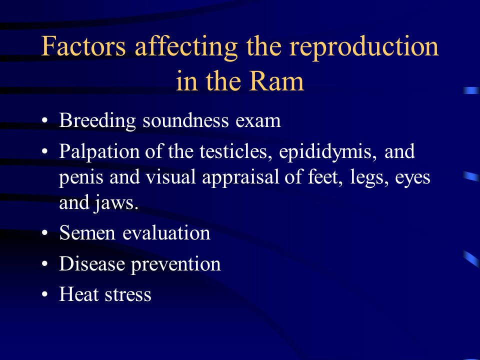 Factors affecting the reproduction in the Ram
