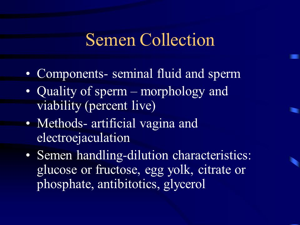 Semen Collection Components- seminal fluid and sperm