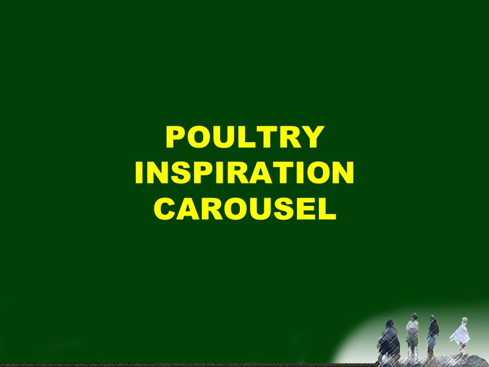 POULTRY INSPIRATION CAROUSEL