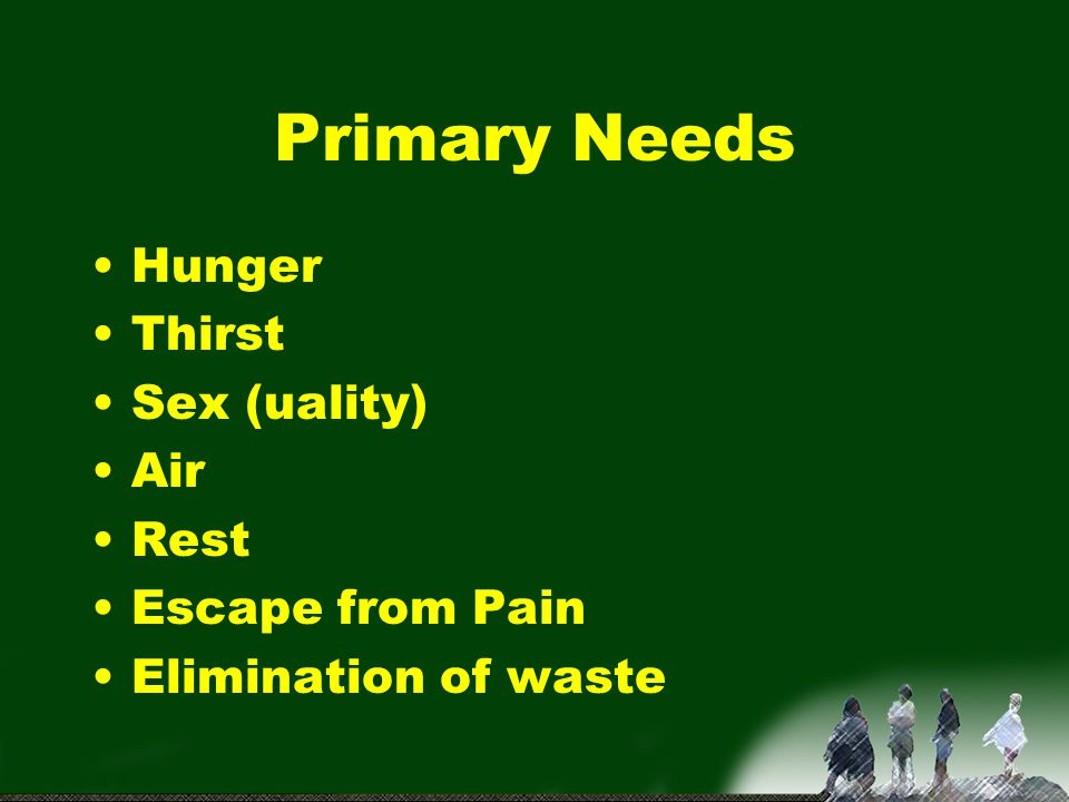 Primary Needs Hunger Thirst Sex (uality) Air Rest Escape from Pain