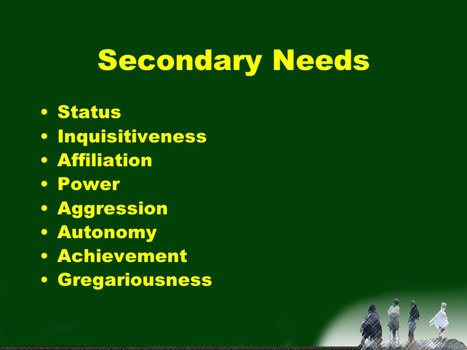 Secondary Needs Status Inquisitiveness Affiliation Power Aggression