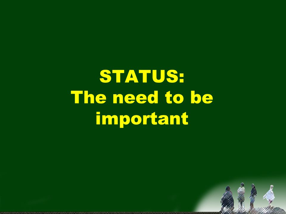STATUS: The need to be important