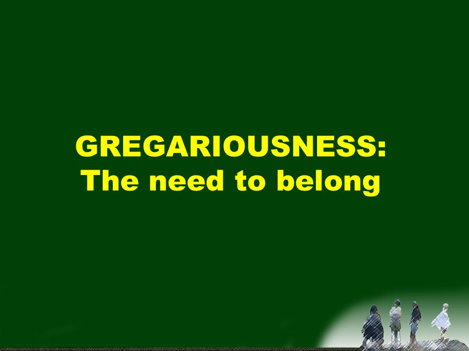 GREGARIOUSNESS: The need to belong