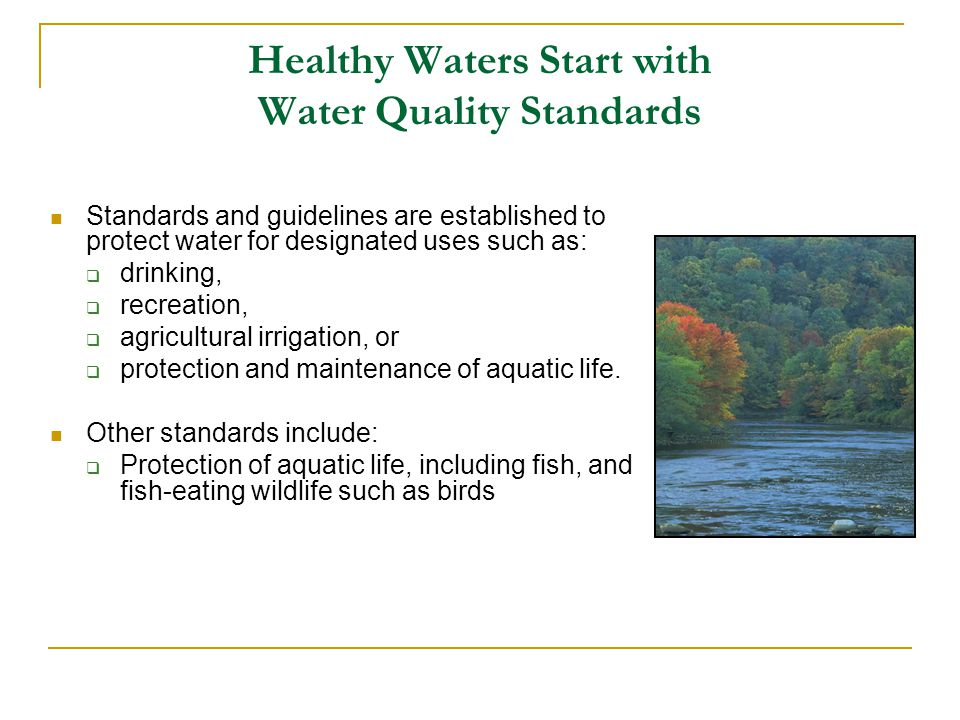 Healthy Waters Start with Water Quality Standards