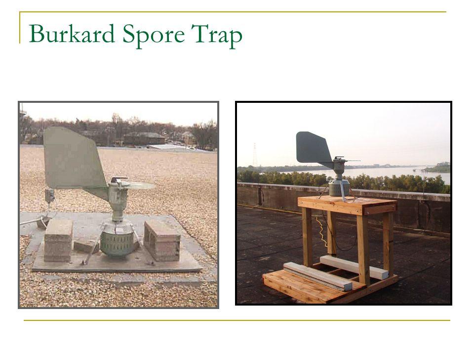 Burkard Spore Trap