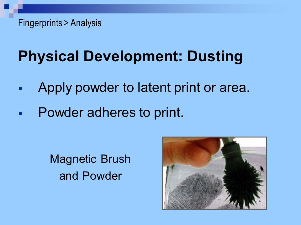 Physical Development: Dusting