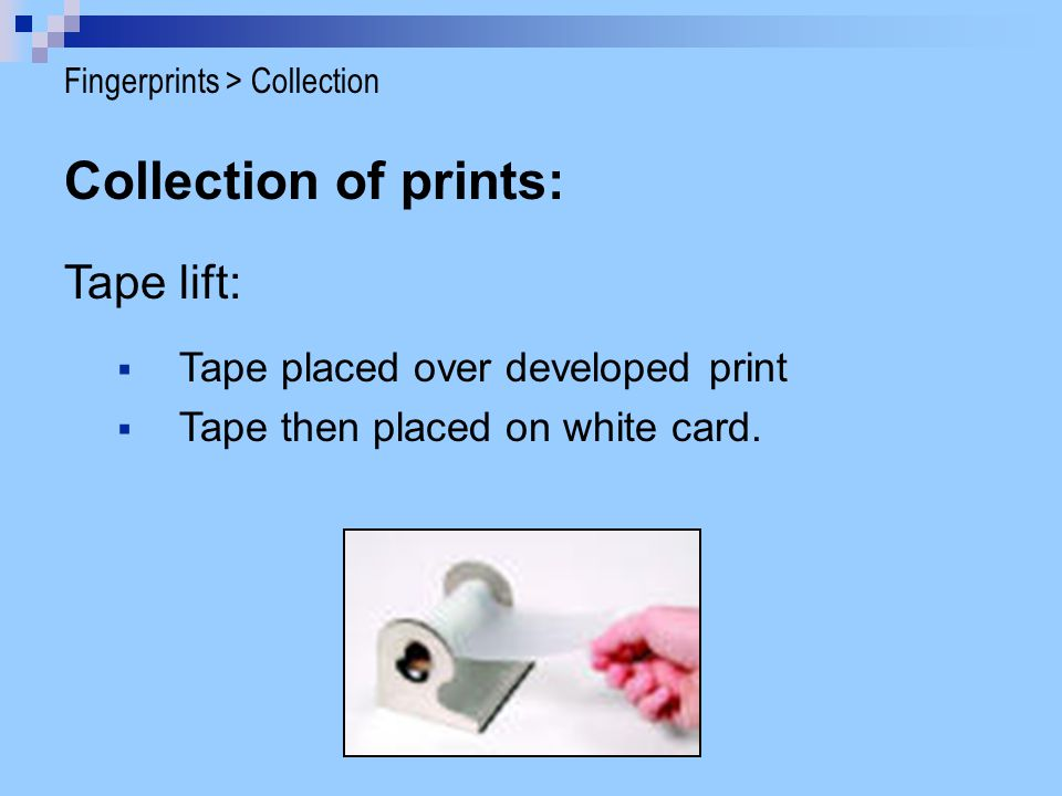 Collection of prints: Tape lift: Tape placed over developed print