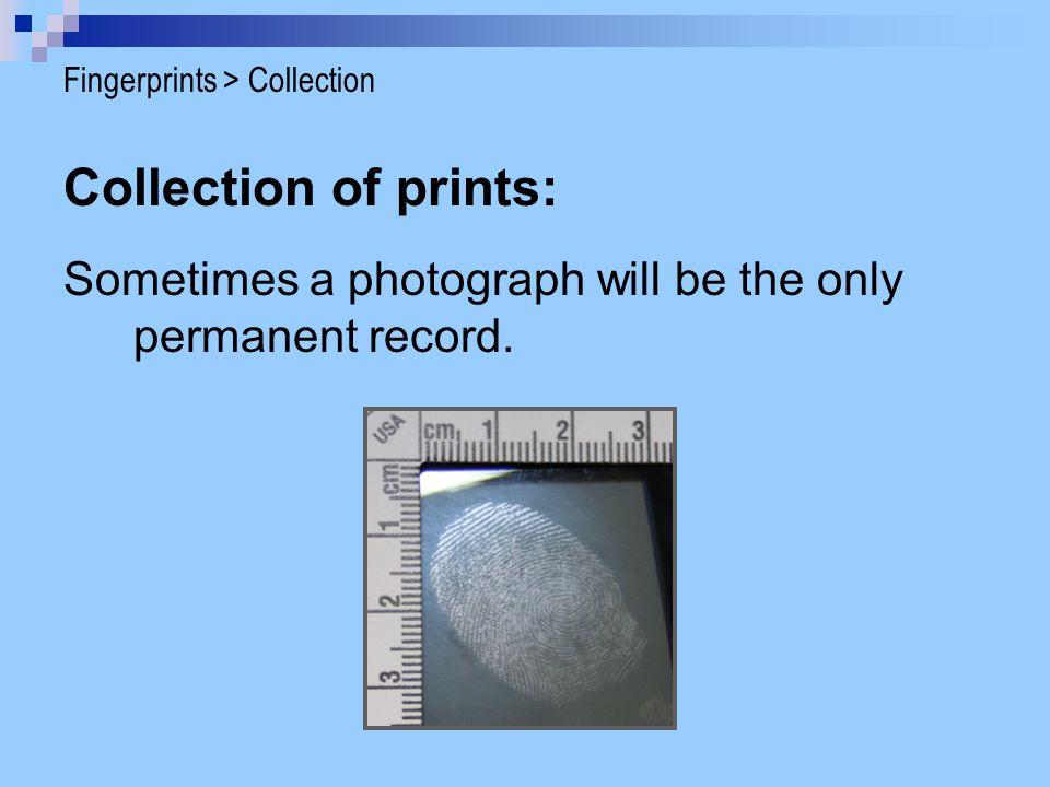 Fingerprints > Collection