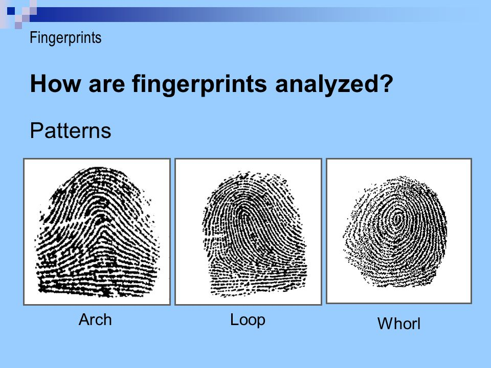 How are fingerprints analyzed