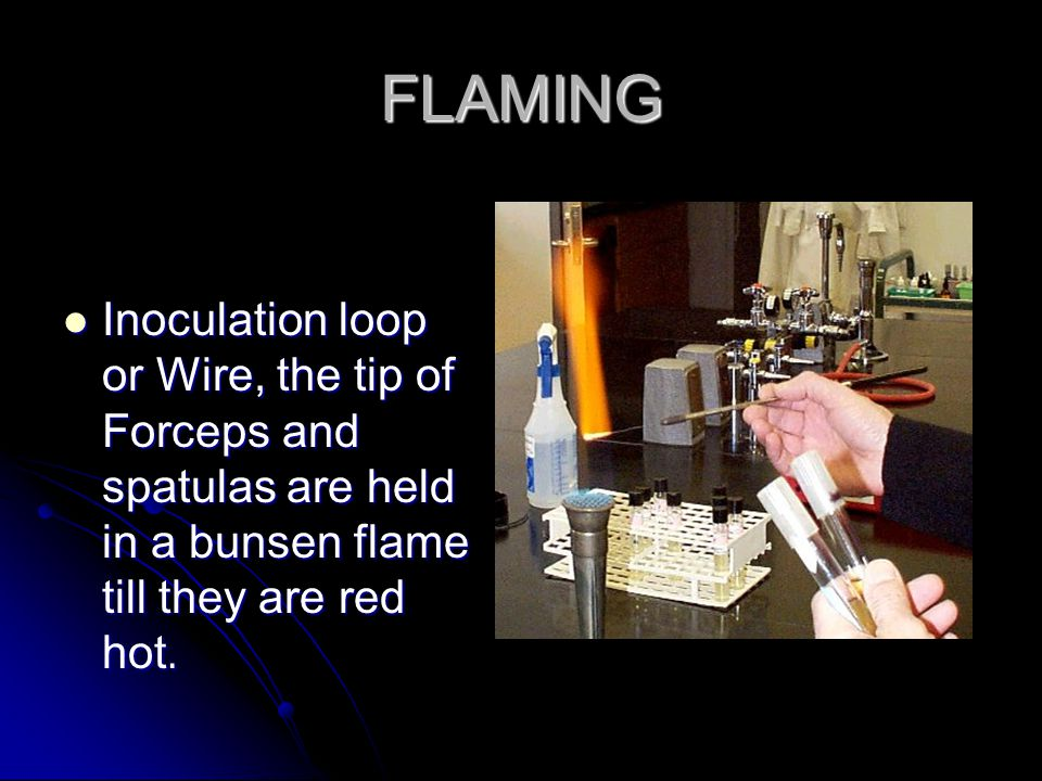 FLAMING Inoculation loop or Wire, the tip of Forceps and spatulas are held in a bunsen flame till they are red hot.