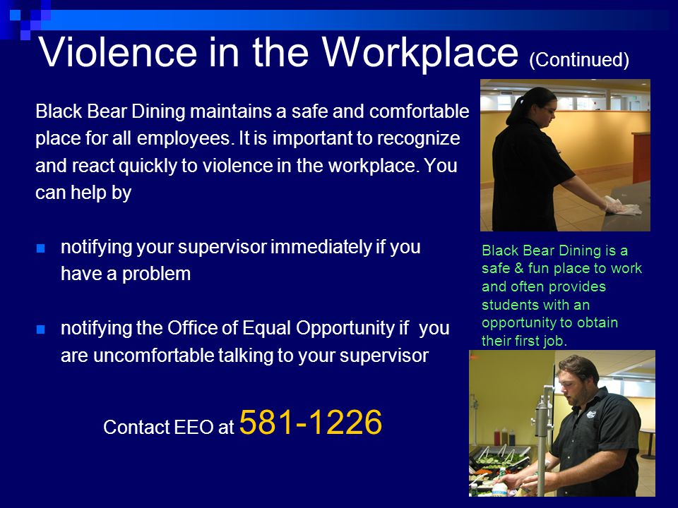 Violence in the Workplace (Continued)