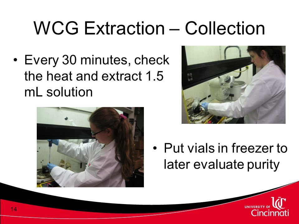 WCG Extraction – Collection