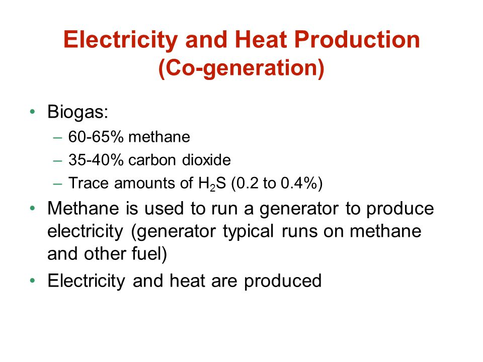 Electricity and Heat Production (Co-generation)
