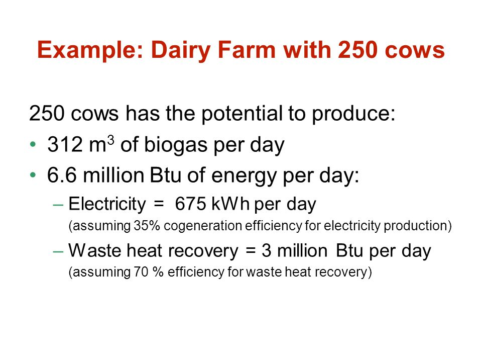Example: Dairy Farm with 250 cows