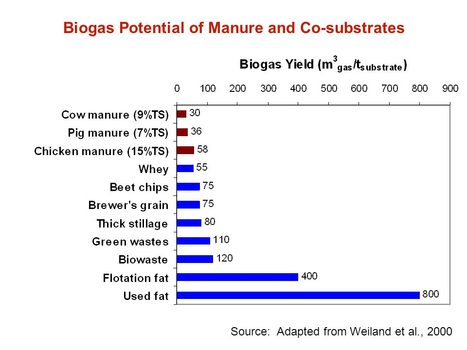 Biogas Potential of Manure and Co-substrates