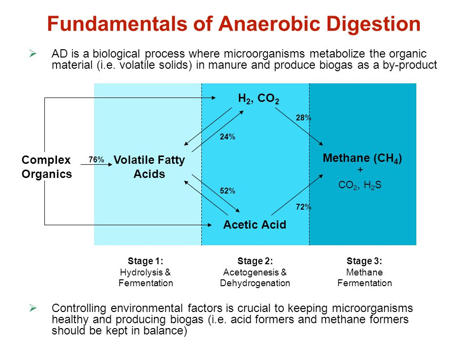 Fundamentals of Anaerobic Digestion