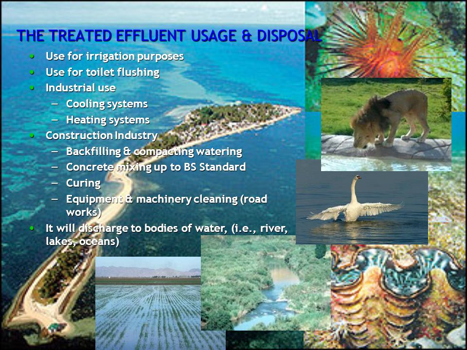 THE TREATED EFFLUENT USAGE & DISPOSAL